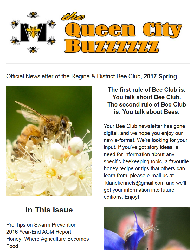 spring_17_newsletter_thumb